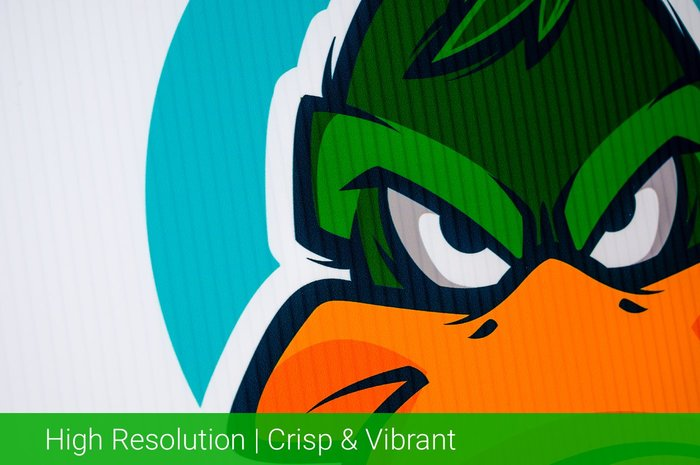 High Resolution Crisp & Vibrant